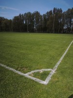 Sportveld afbeelding